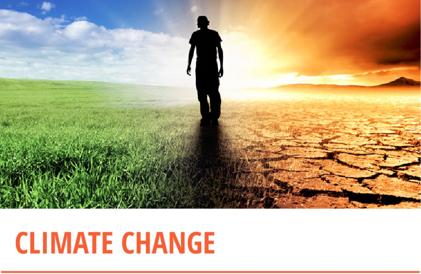 Climate Change/Resilience